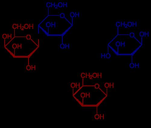 Laktoseintoleranz / Fruktoseintoleranz: Laktose mit Spaltung in Glucose und Galaktose